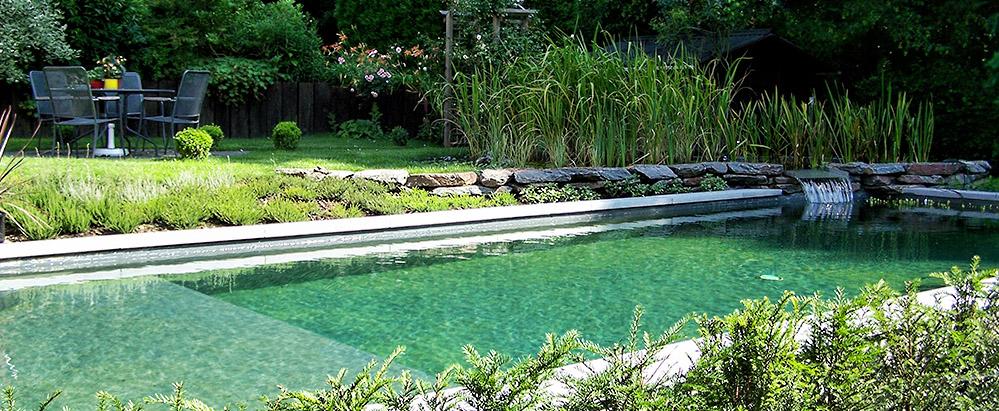 Aquatic design concept et garden jardins aquatiques - Fontaine de jardin occasion belgique ...