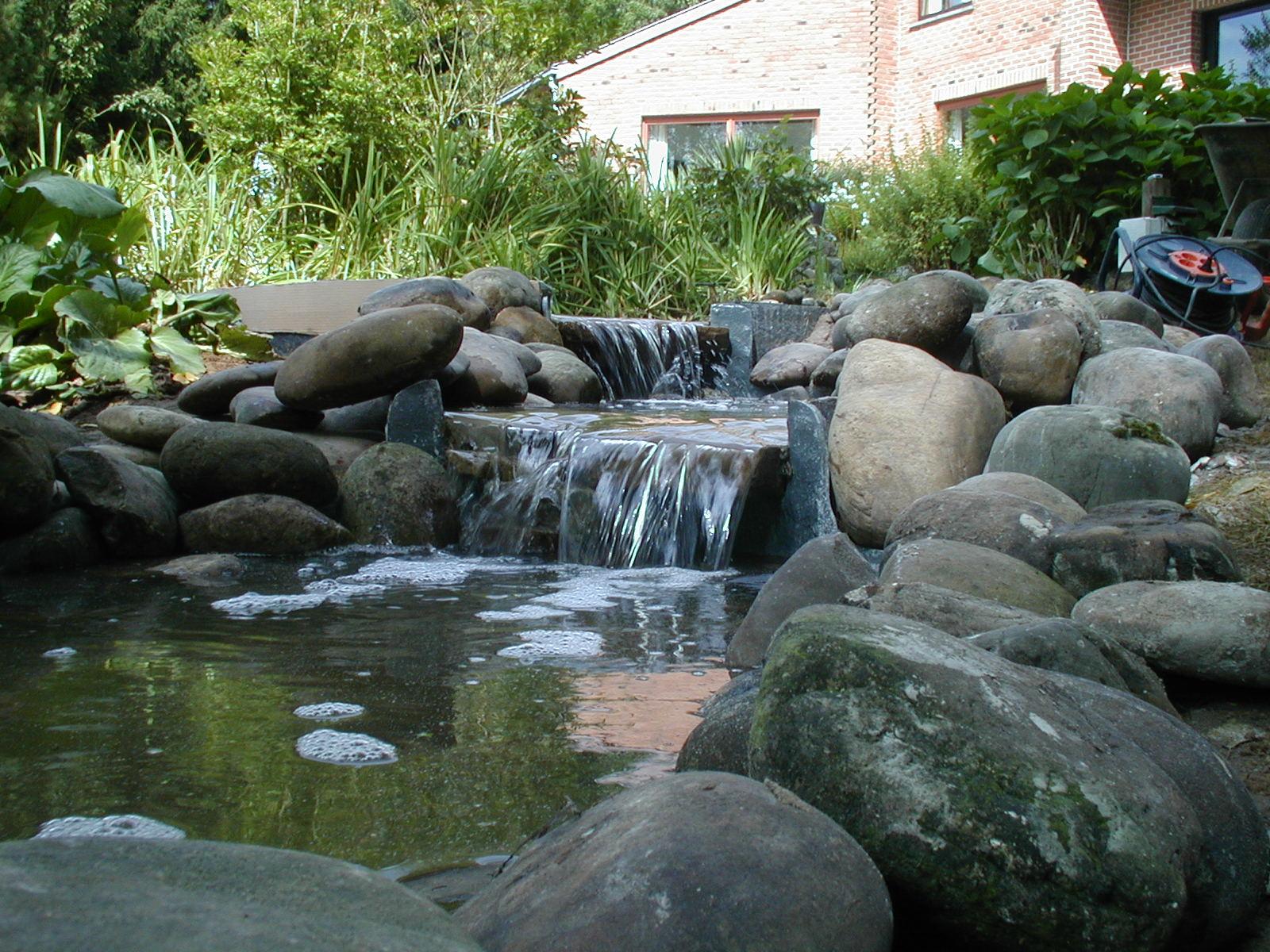 Aquatic Design Concept Et Garden Jardins Aquatiques Bassins Fontaines Tang Mat Riel