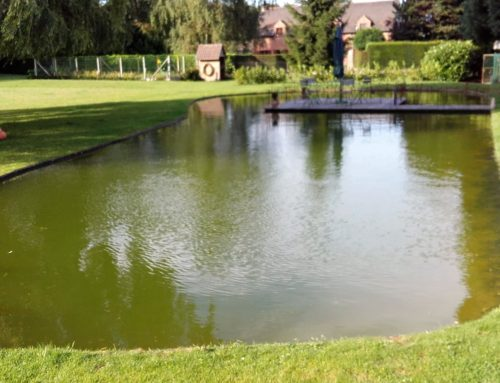 Bassin bâche